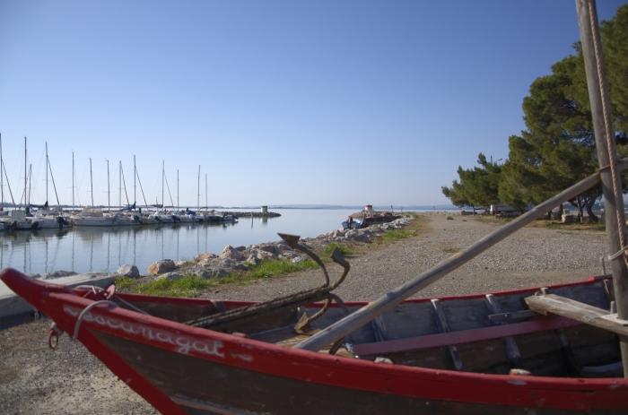 barque2